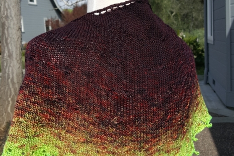 Burgundy and chartreuse shawl