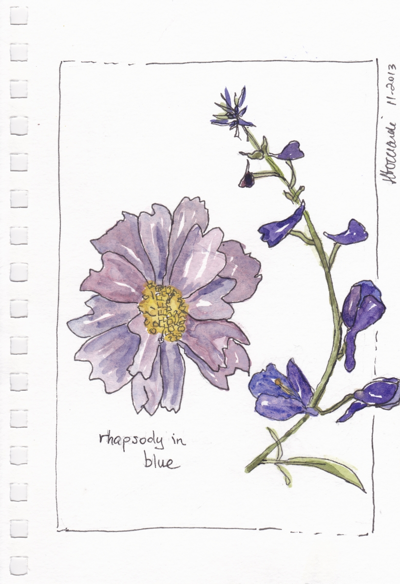 Sketch of blue flowers by Janet Bocciardi