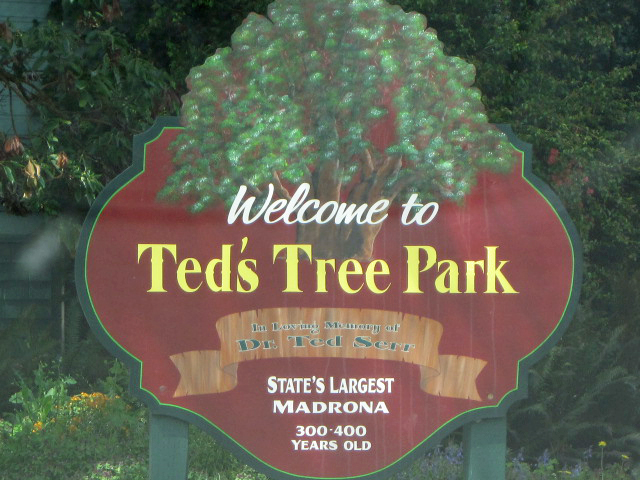 Ted's Tree Park, Port Angeles, Washington