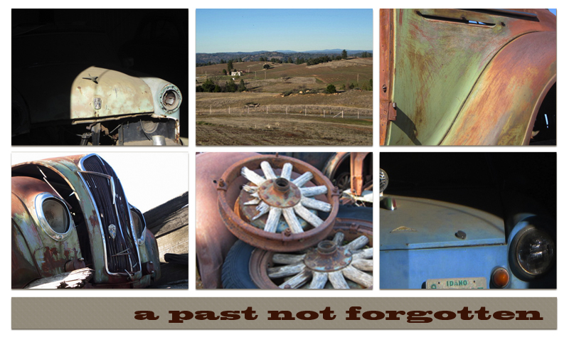 Amador County wine country photo collage